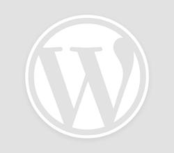 Fitbit Surge: prezzo e recensione